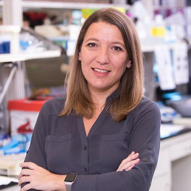Maria E. Figueroa, M.D.