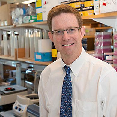 Timothy A. Graubert, M.D.