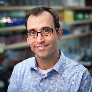 Jeffery M. Klco, M.D., Ph.D.