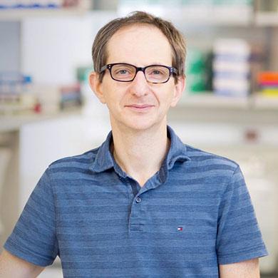 Boris Reizis, Ph.D.